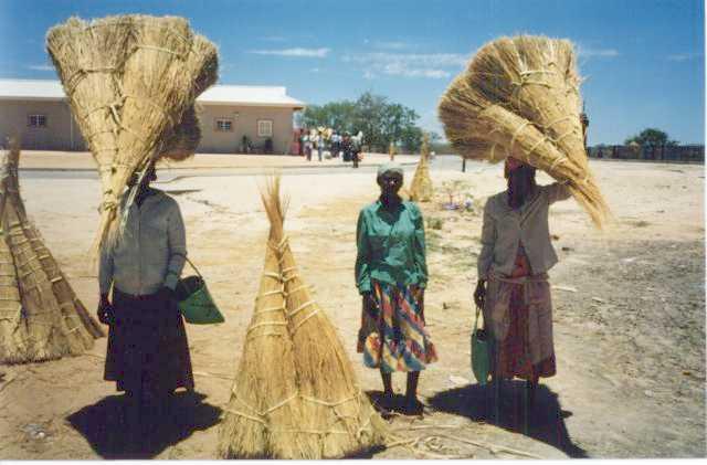 women carrying bundles of thatch  grass  - oshikango  namibia  1996 - photos