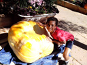 Joachim with a giant pumpkin, Fort Collins, Colorado, 2014