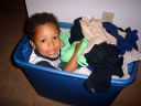 Joachim in a laundry basket, Fort Collins, Colorado, 2008